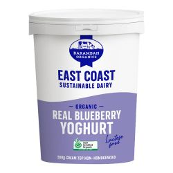 Lactose Free Yoghurt - Real Blueberry
