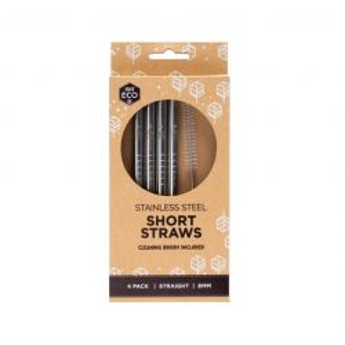 Short Stainless Steel Straight Straws