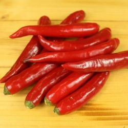 Long Red Chilli