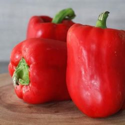 Dutch Red Capsicum