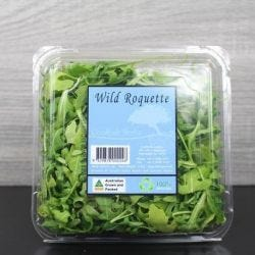 Wild Roquette