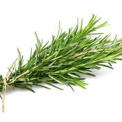 Rosemary Herb Loose